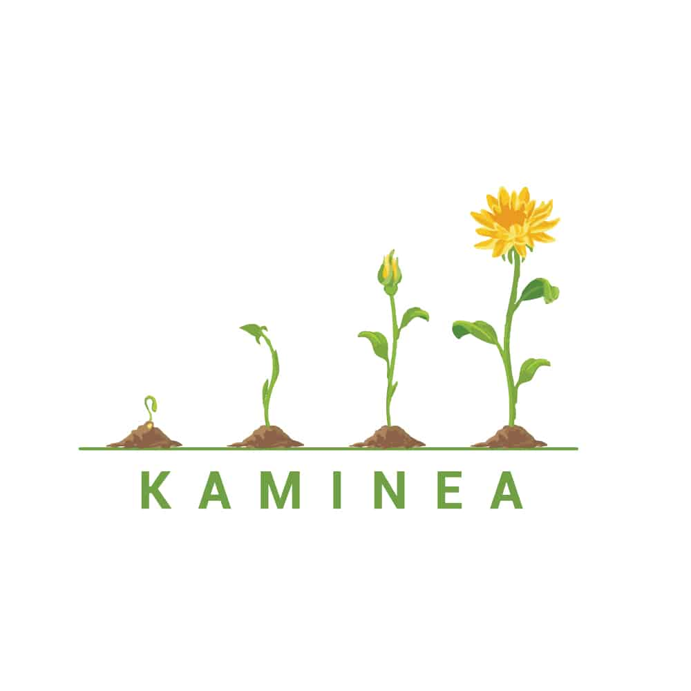 Kaminea Campaigning for sustainable cities and communities