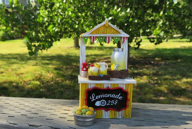 Homemade Lemonade For Your Kids